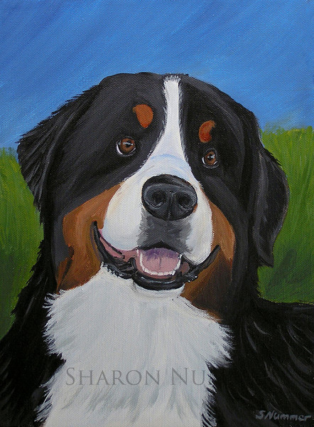 """'Portrait of a Bernese Mountain Dog""""   ©  Sharon Nummer   All rights reserved by the artist.  Acrylic painting on canvas  I met this sweet boy at a dog show.  His engaging personality was something I wanted to capture on canvas.  The original has been sold."""