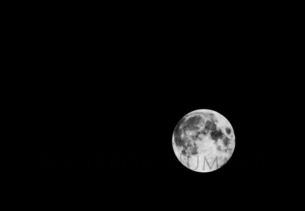 Full Moon, July 2011.  © Sharon Nummer  This night I was fortunate to get shots of the moon passing through clouds.  Once the clouds moved off, the moon was left all alone.